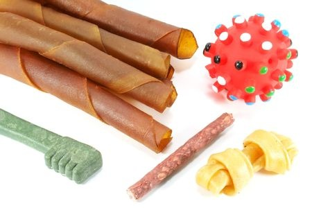 3112758 - dog toys and treats on a white surface