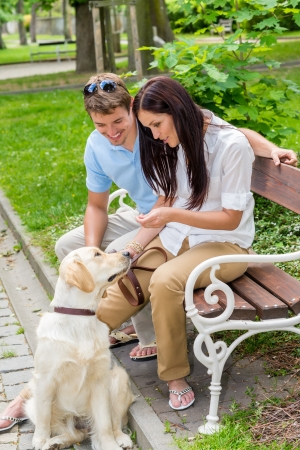 14899949 - young couple training dog in the park happy teaching pet