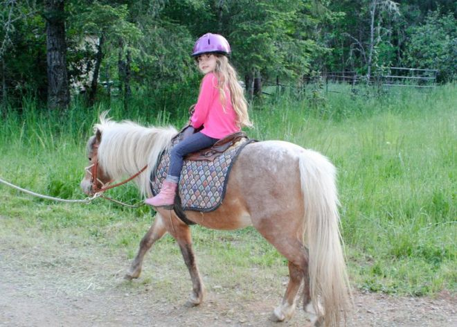 15340398 - very young girl riding on pony