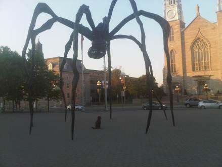Ottawa-20110704-00546