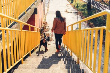 Girl and dog going down the stairs